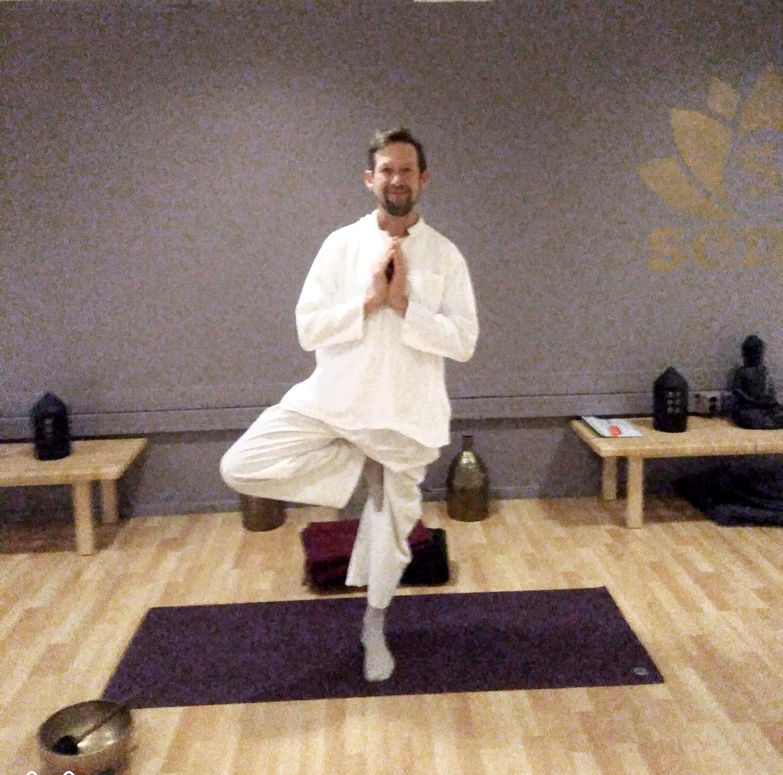 raja yoga med erik høivold