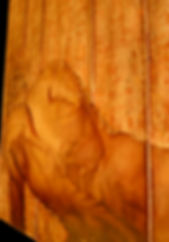 accinctiodettaglio2web.jpg