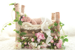 Susana Apraez, Fotos recien nacidos