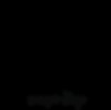 лого черный ff.png