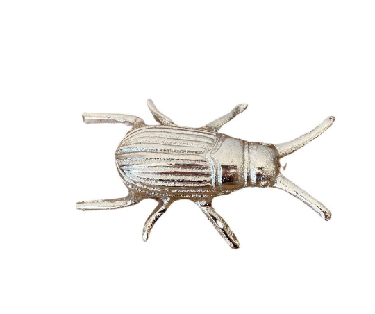 Fun, Quirky and Unique Home & Giftware | Silver Metal Beetle Home Ornament / Home Accessory