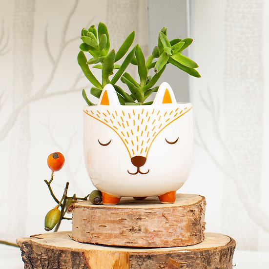 Mini Indoor Planter Pot (succulent planter) in Fox design with 3 legs and sticky up ears. White, orange and brown in colour.