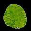 les-adaptogenes-inners.png