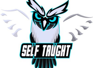 Self Taught wins Season 5 PS4 Championship
