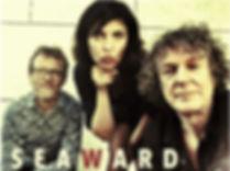 SEAWARD.jpg