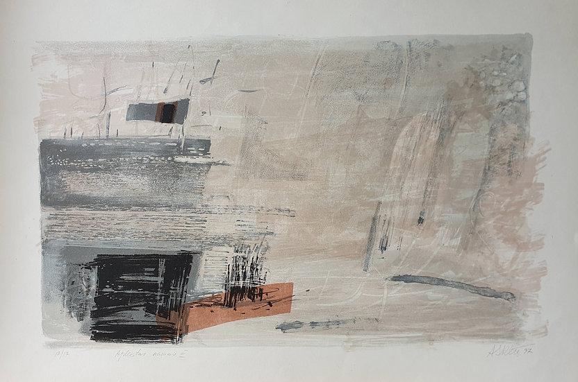 Adasa Skliutauskaitė, Apleistas namas III, 1997