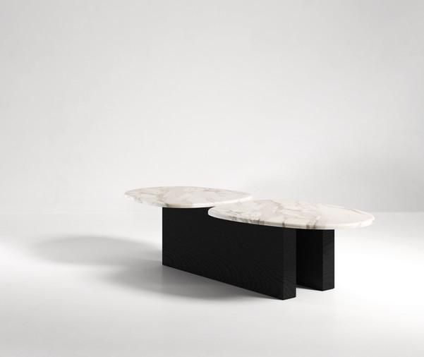 TARAS COFFEE TABLE 01.jpg