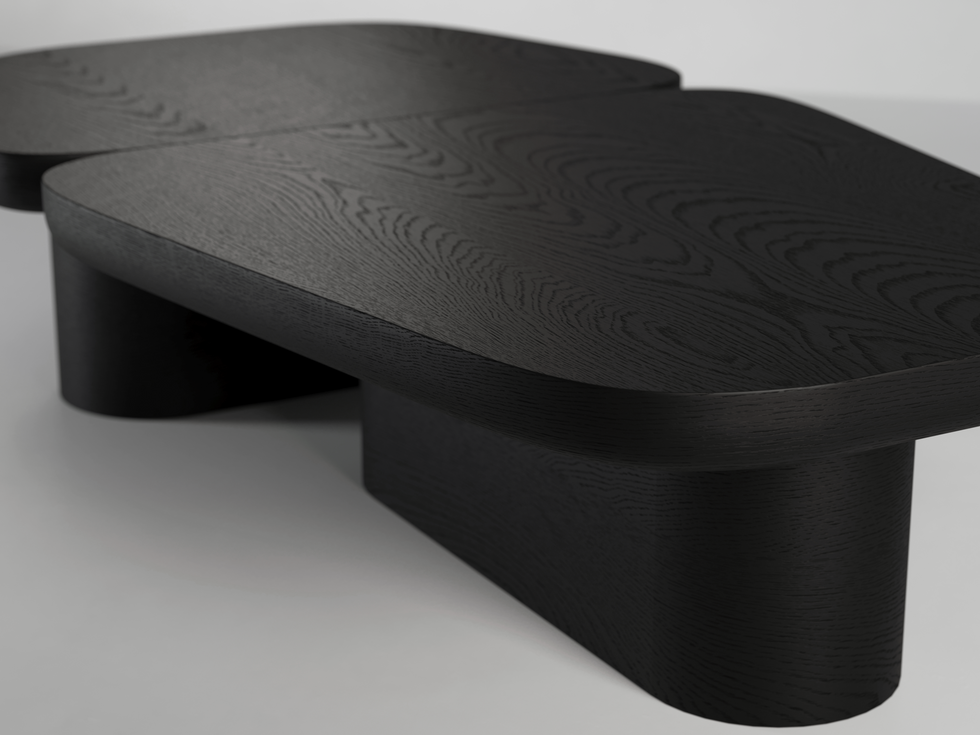 Pangea Coffee Table 04 d.png
