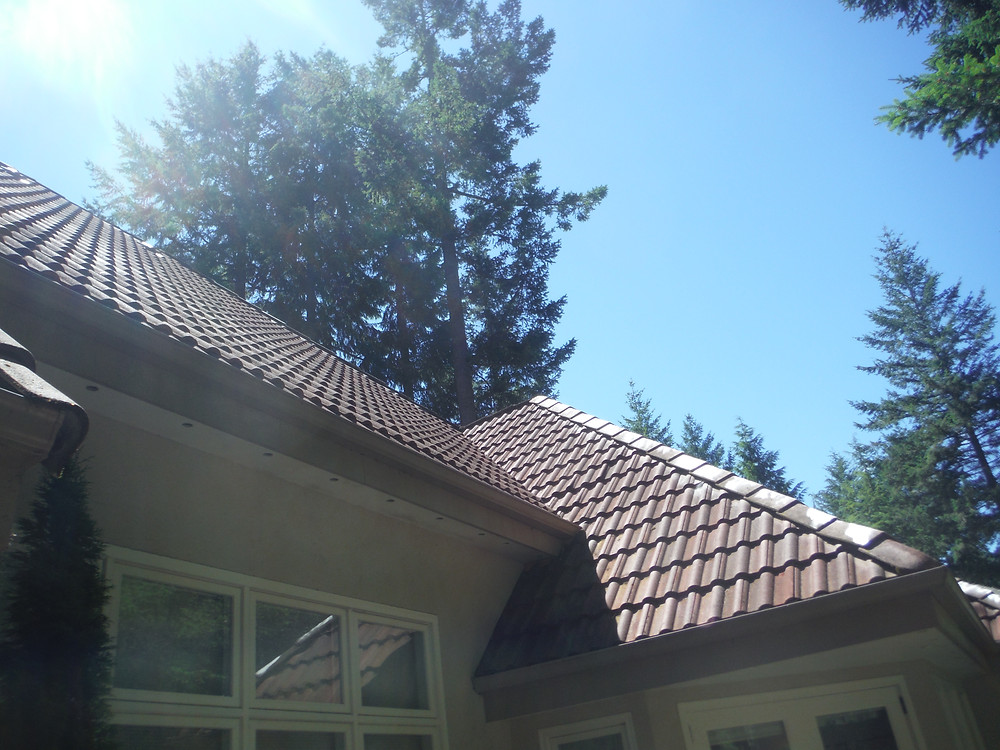 Home with architectural shingles and sunshine.