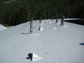 Roof Top Silver Ski Chalet