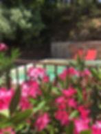 fleurs-piscine.JPG