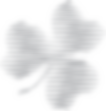 just shamrock small solid.png