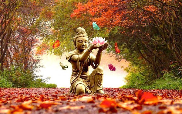 herfst-lotus-bloem.jpg