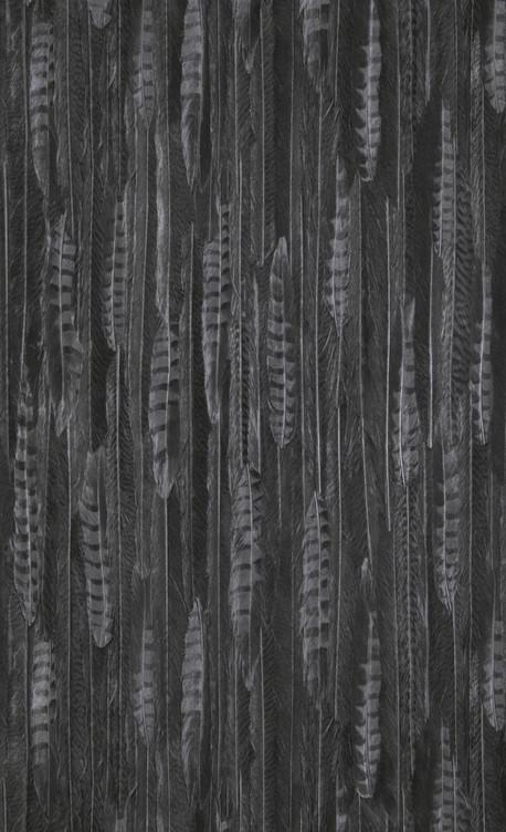 Feathers - black - 17968.jpg