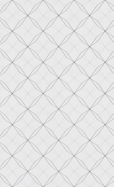 SMT OCTAGON - white - 219242.jpg