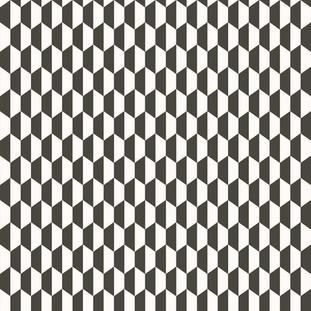 TNZ HEXAGO TNZ 3779 BLACK WHITE.jpg