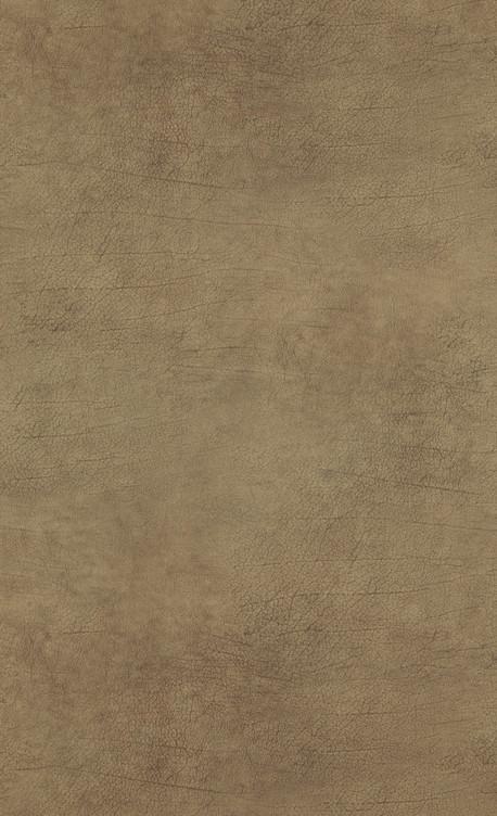 Leather - brown mid - 17924.jpg