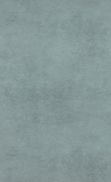 Leather - turquoise - 17923.jpg