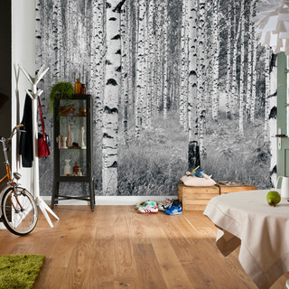 xxl4-023_woods_interieur_i.jpg