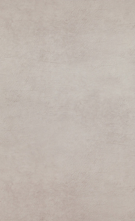 Leather - brown light, beige - 17930.jpg
