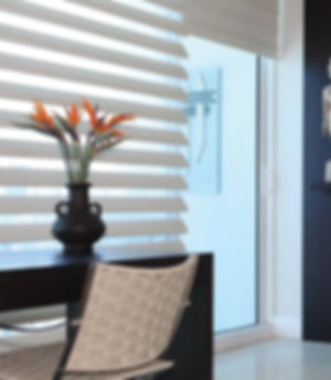 Hunter-Douglas-Pirouette-Sheer-Shades-Fl