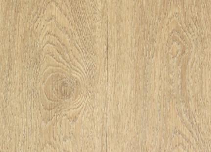 img-ficha evolution white oak.jpg