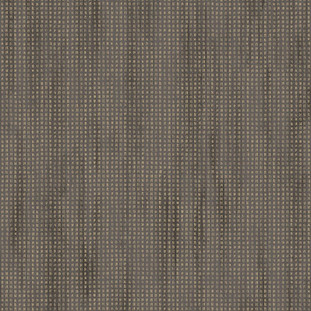 D T. PSG ABSTRACT - TP21243 ANTHRACITE.j