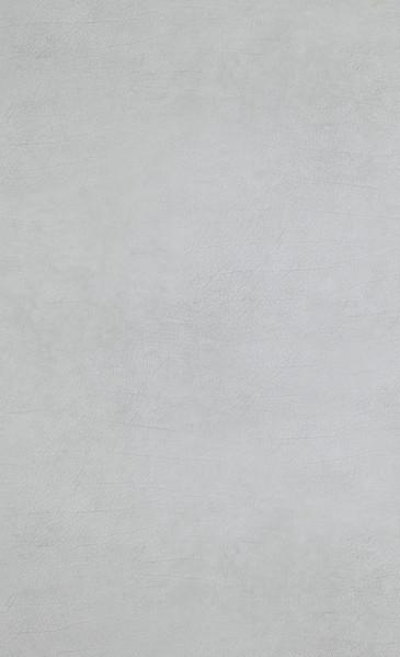 Leather - grey light - 17934.jpg