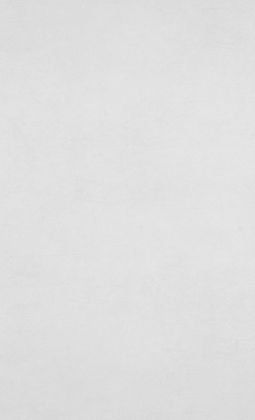 Leather - white - 17920.jpg