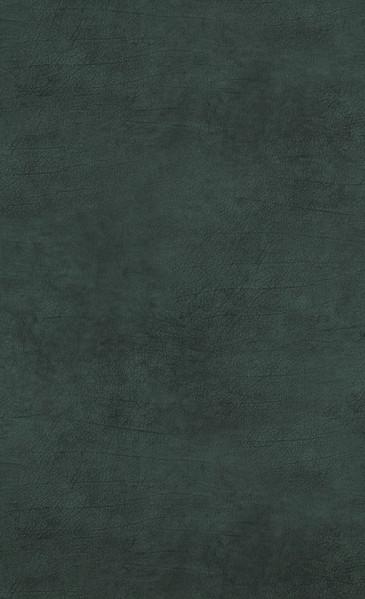 Leather - green dark - 17935.jpg