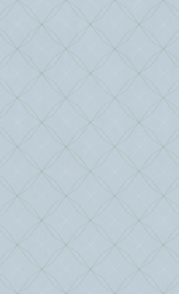 SMT OCTAGON - blue - 219244.jpg