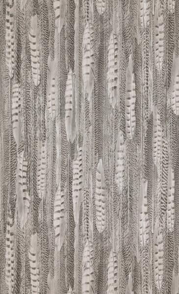 Feathers - brown light - 17965.jpg