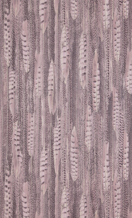 Feathers - pink - 17961.jpg