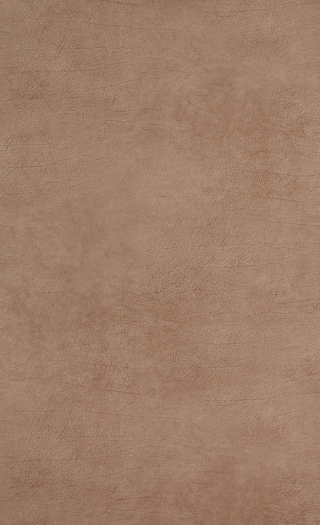 Leather - brown mid - 17919.jpg