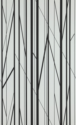 Branches - black, white.jpg