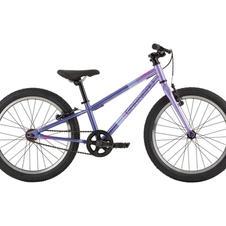 Neo 207 Lavender