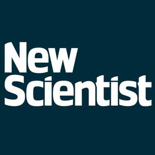 Zap to the brain alters libido in unique sex study