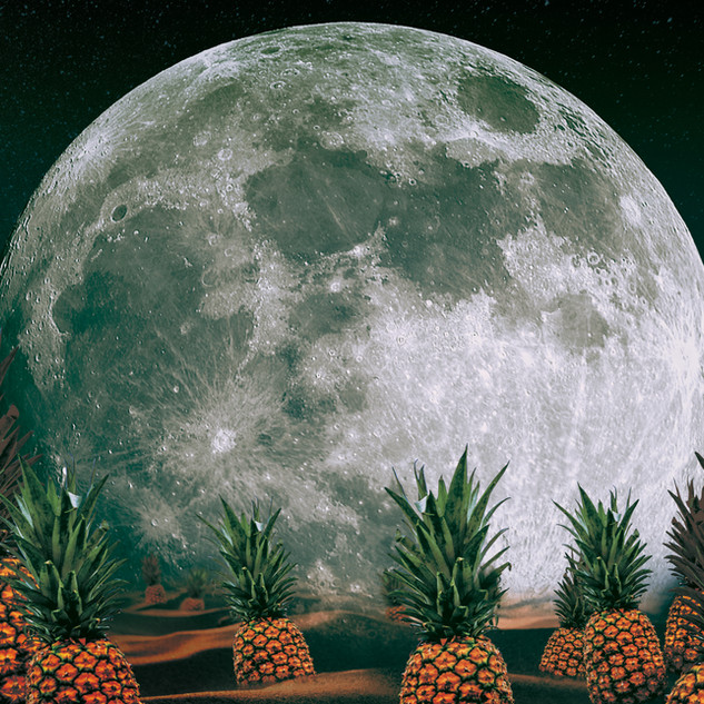 Space Pinapple