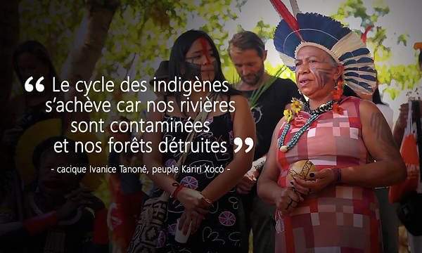 SOS d'un Brésil indigène.png