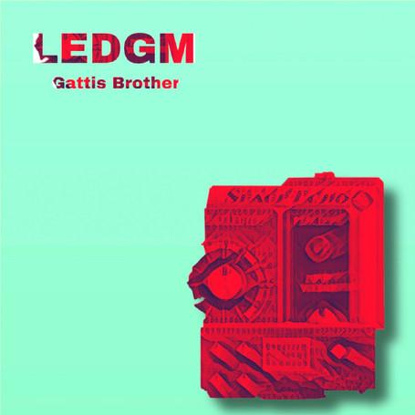 LEDGM (2020)