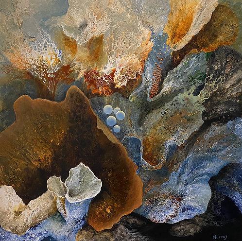 Ebb by Linda Clowes Murray