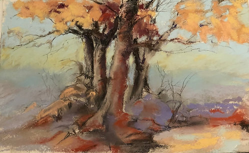 Tree Thoughts by Mary Beth Morrison