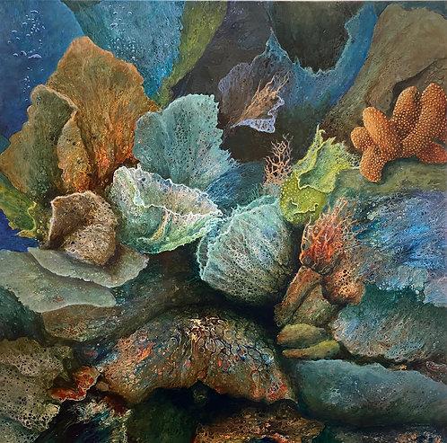 Night Dive by Linda Murray