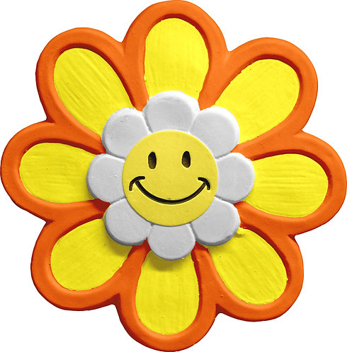 Daisy with Smile Face Plaque Painting Kit