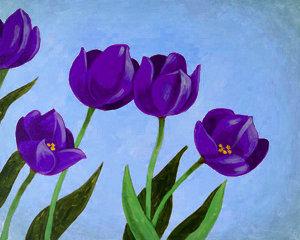 Tulips Are Purple