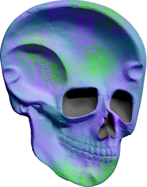 Skull Plaque Painting Kit