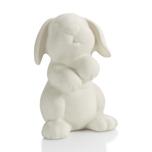 Rabbit Party Animal