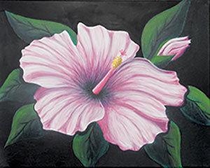 Hibiscus I