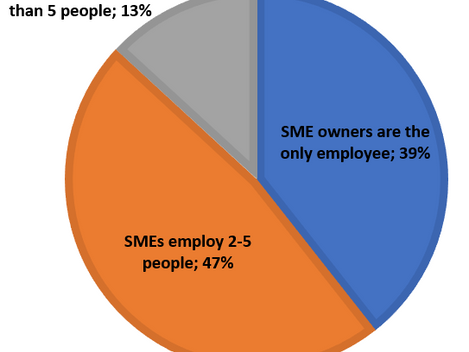 What Can Stakeholders Do to Help SMEs?