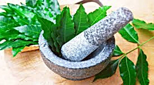 Just eat few leaves (leafs) of kadvaa (bitter) Neem and it will always protect you from these many deceases issue and health problems while keeping you happy and healthy for life